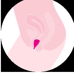 Menstrualna skodelica Lily